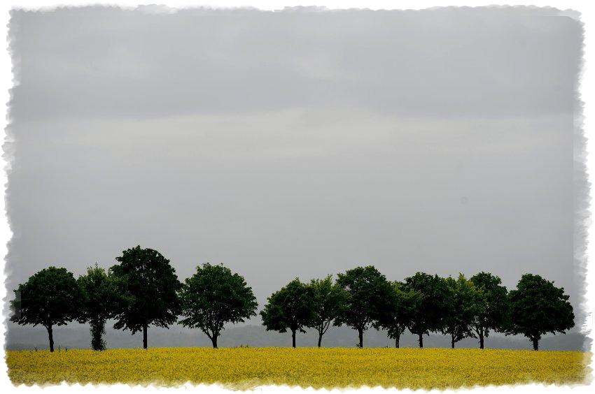 Пасмурная погода в Германии